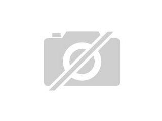 Seit Ihr Rattenliebhaber Wollt Ihr Ratten Haben Und Ihnen Ein Guter Futter